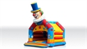 Picture for category Bounce Clown with roof